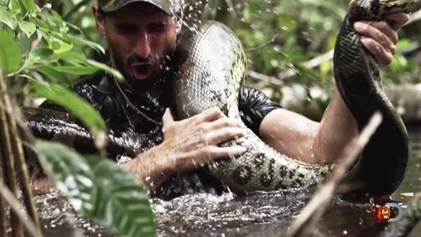 Anaconda no quiso tragarse a científico
