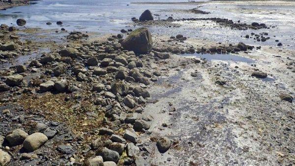 Descubren trampa prehistórica para peces en Alaska